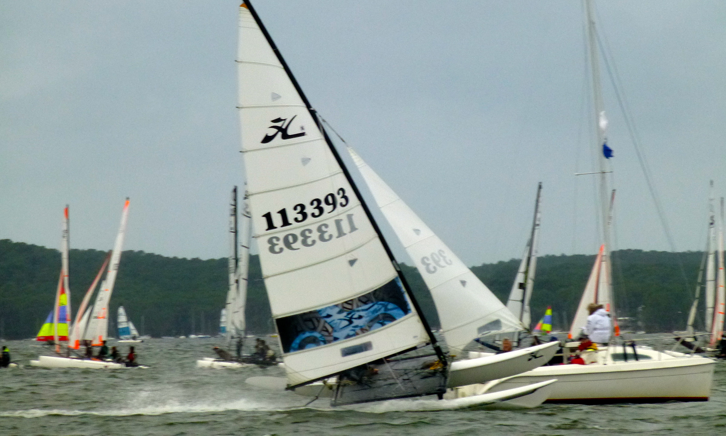 r u00e9ussite du grand prix de l u2019armistice  le plus grand rassemblement de catamarans de sport